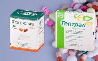 Фосфоглив или Гептрал: что лучше? Узнай мнение врачей!