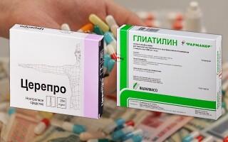 Глиатилин или Церепро – что лучше? Все «за» и «против»!
