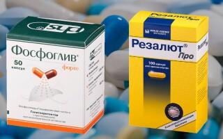 Что лучше: Резалют Про или Фосфоглив? Описание препаратов