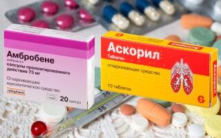Аскорил или Амбробене – что лучше? Что нам ожидать от этих лекарств?