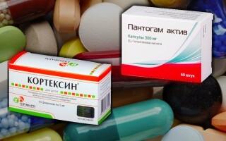 Кортексин или Пантогам: что лучше? Можно ли одновременно?