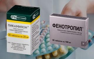 Что лучше Фенотропил или Пикамилон? Совместимость препаратов