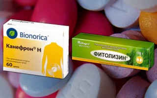 Фитолизин или Канефрон — что лучше? Вся правда о препаратах!